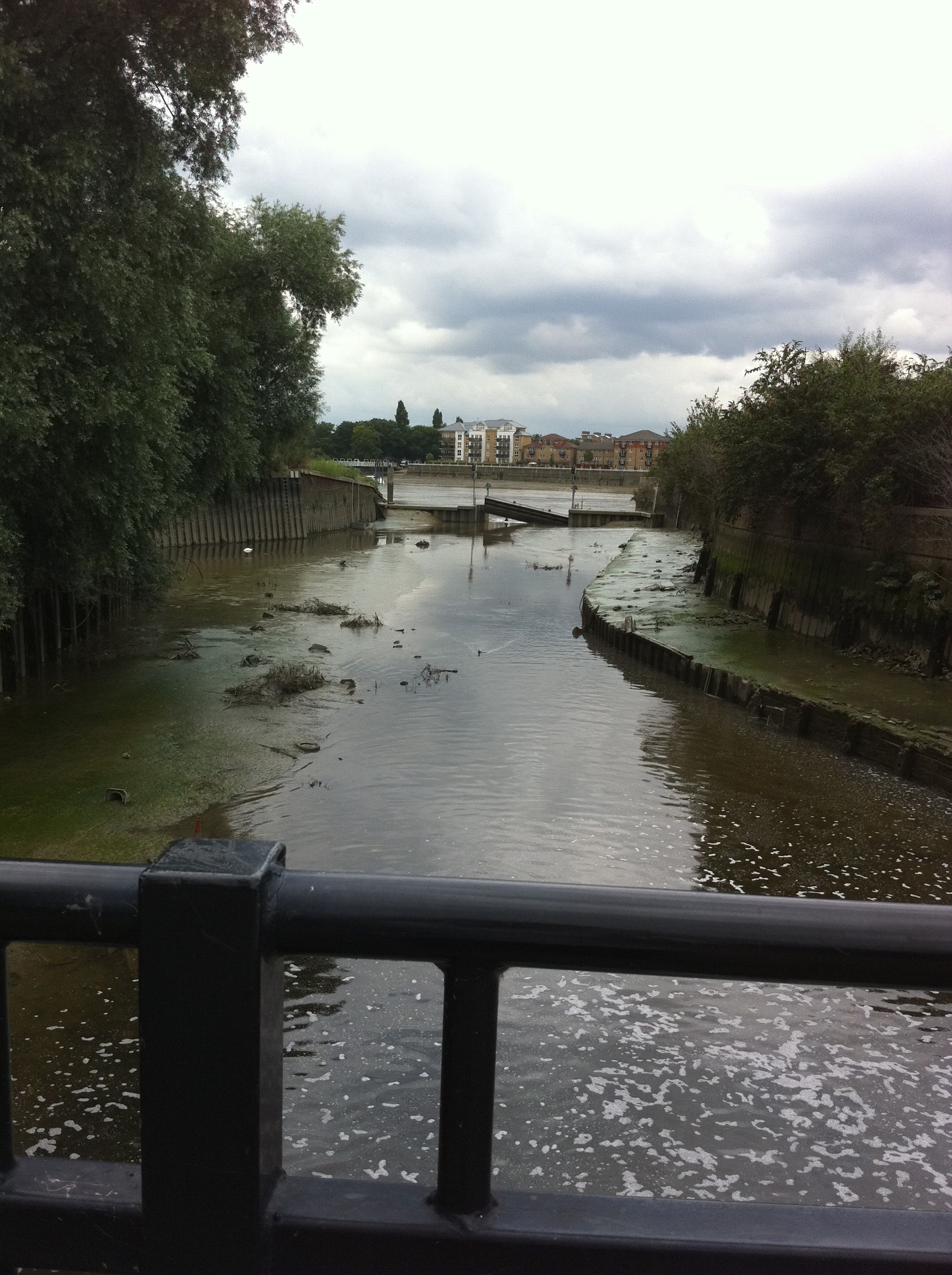 River Wandle meets the Thames